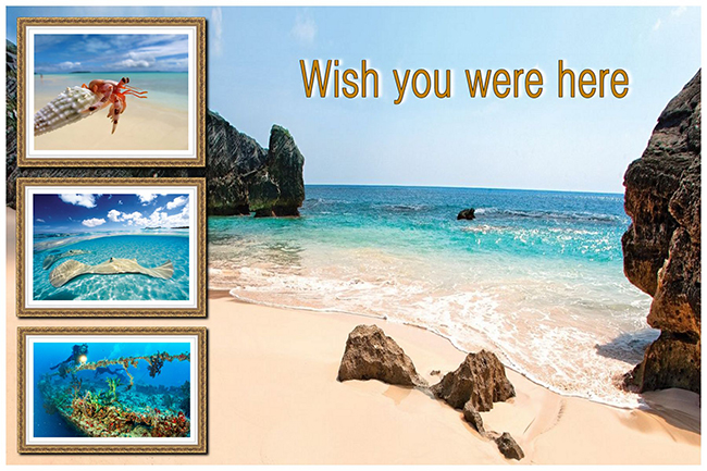 Travel postcard with a picture collage