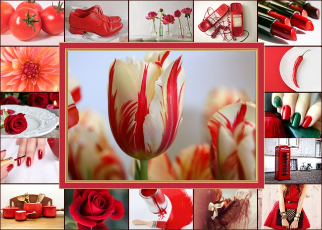red photo grid collage